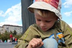 De kleine jongen ziet een lieveheersbeestjeinsect op hand stock foto's