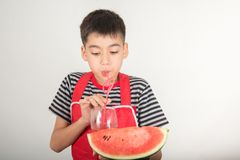 De kleine jongens mengen het sap van watermelone door mixerhuis te gebruiken royalty-vrije stock foto's