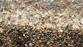 De kleine kiezelstenen op de kust wordt gewassen door water, close-up stock videobeelden