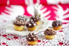 De kleine muffins met chocolade en bestrooit Stock Foto