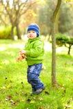 De kleine mooie jongen loopt op een groene open plek stock foto