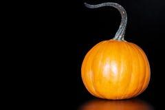 De kleine Oranje Pompoen van de Pastei op Donkere Zwarte Achtergrond Royalty-vrije Stock Afbeelding