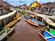 De Kleine Rivier van Borneo stock afbeeldingen