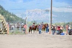 De kleine Rodeo van de Rijbroek Stock Foto's