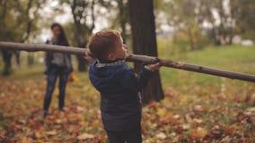 De kleine roodharige jongen neemt een gebroken tak van een boom in de herfstpark onder op de vergelende bladeren stock footage