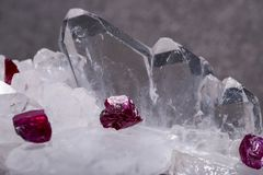 De kleine ruwe ROBIJNRODE kristallen van de hoogste kwaliteitsa rang van Tanzania op FADEN-KWARTScluster Geïsoleerd op Zwarte stock foto