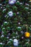 De kleine sparrenkoude in de winter Stock Afbeelding