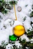 De kleine sparrenkoude in de winter Stock Fotografie