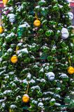 De kleine sparrenkoude in de winter Royalty-vrije Stock Afbeelding