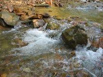 De kleine stroom van de bergrivier Royalty-vrije Stock Fotografie
