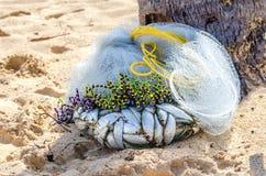 De kleine verse, levende vis in een wit visnet, kapron netwerk, ligt royalty-vrije stock afbeeldingen