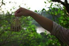 de kleine vogels worden bevrijd omhoog als deel van traditioneel dienstenaanbod voor goed geluk stock fotografie