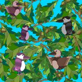 De kleine vogels zingen liederen. Naadloze textuur. Royalty-vrije Stock Afbeeldingen