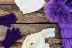 De kleren van de kinderen` s winter: warm jasje, hoed, sjaal, handschoenen Stock Foto