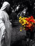 De kleur barstte bloemen Stock Fotografie