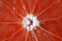 De Kleur van de citrusvrucht Royalty-vrije Stock Foto's