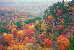 De Kleur van de herfst in Ozarks Royalty-vrije Stock Foto's