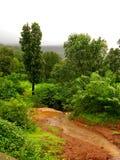 De Kleur van de moesson royalty-vrije stock fotografie