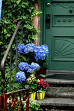 De Kleur van de voordeur Royalty-vrije Stock Afbeelding