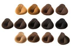 De kleur van het haarlok Stock Afbeelding