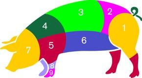 De kleur van het varken Royalty-vrije Illustratie