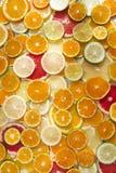De kleuren van citrusvruchten Royalty-vrije Stock Fotografie