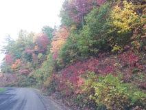 De kleuren van de bergdaling Stock Afbeeldingen