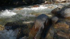 De kleuren van de boogvallei banff van de herfststroomversnelling Royalty-vrije Stock Foto