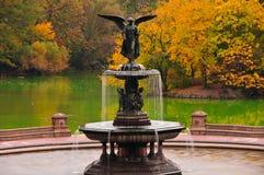 De kleuren van de daling bij Fontein Bethesda in Central Park. Stock Afbeelding