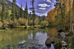 De Kleuren van de daling in Californië stock foto