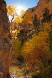 De Kleuren van de daling in de Canion van de Doos van de Dood Stock Afbeelding
