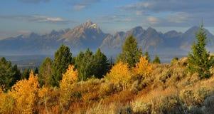 De Kleuren van de daling, Tetons Stock Fotografie