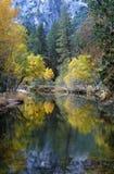De kleuren van de daling in Yosemite, Californië Royalty-vrije Stock Afbeelding