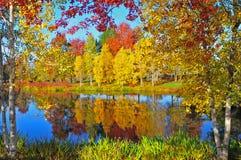 De kleuren van de herfst Royalty-vrije Stock Afbeeldingen
