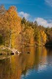 De kleuren van de herfst royalty-vrije stock fotografie