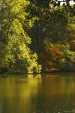 De Kleuren van de herfst bij Meer stock afbeelding