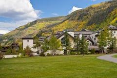 De kleuren van de herfst in Colorado. royalty-vrije stock fotografie