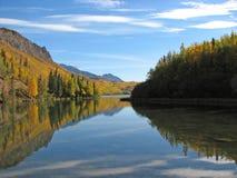 De Kleuren van de herfst die in een Meer worden weerspiegeld Van Alaska Stock Foto