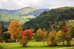 De kleuren van de herfst in Wagrain, Oostenrijk Royalty-vrije Stock Afbeelding