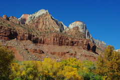 De kleuren van de herfst in Zion Nationaal Park, Utah Stock Foto