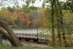 De kleuren van de herfst in een park stock afbeelding