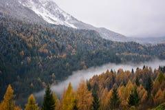 De kleuren van de herfst geven aan de sneeuw uiting en aan de winter zijn de bergen nu behandeld met wolken en mist stock fotografie