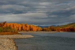 De kleuren van de herfst zijn koud-waterrivieren van Magadan stock afbeelding