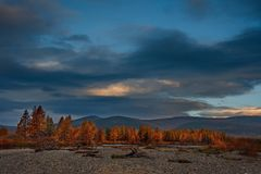 De kleuren van de herfst zijn koud-waterrivieren van Magadan stock afbeeldingen