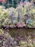 De Kleuren van het dalingswater stock afbeelding