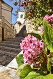 De kleuren van de lente in de stegen van een klein dorp stock fotografie