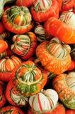 De kleurengurde van Multy Stock Foto