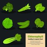 De kleurenpictogrammen van chlorofylgroenten voor Web en mobiel ontwerp worden geplaatst dat Stock Afbeeldingen