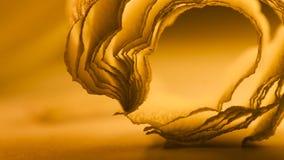 De kleurrijke abstracte samenstelling met sinaasappel omfloerst Stock Foto