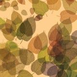 De kleurrijke achtergrond van de herfstbladeren stock illustratie